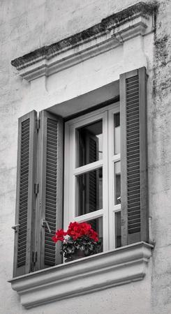Window with flowers. photo