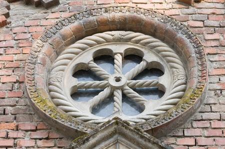 Rose window. Archivio Fotografico