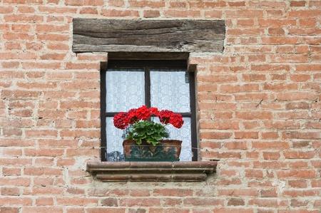 Window with flowers. Grazzano Visconti. Emilia-Romagna. Italy. Archivio Fotografico