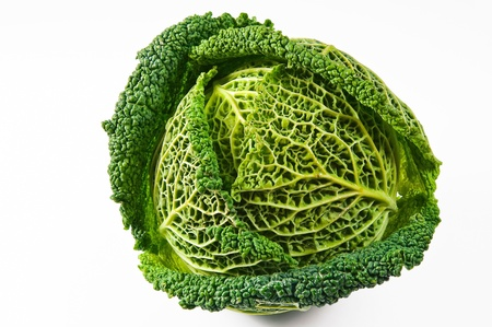 Savoy cabbage. photo