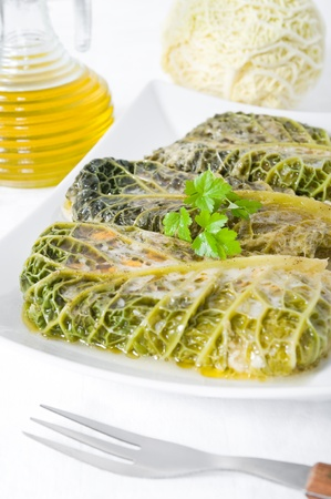 Savoy cabbage rolls on white dish  photo