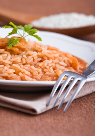 Shrimp risotto   Stock Photo - 13392452