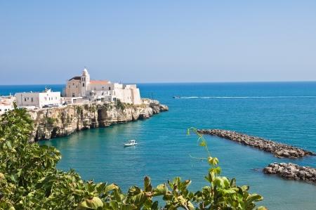 Panoramic view of Vieste. Puglia. Italy. Imagens - 14437630