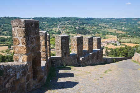 fortified: Fortified walls  Orvieto  Umbria  Italy  Stock Photo
