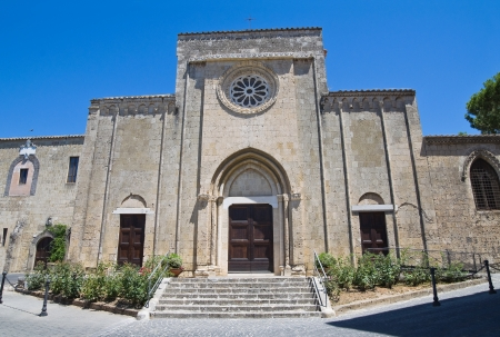 Church of St. Francesco. Tarquinia. Lazio. Italy. photo