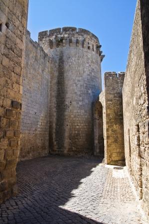 Tower of Matilde of Canossa. Tarquinia. Lazio. Italy.
