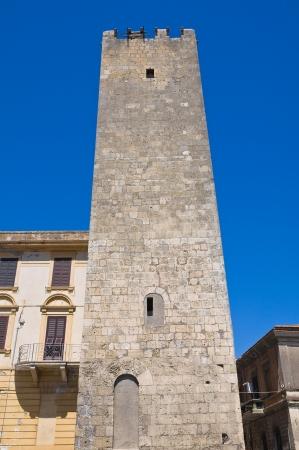 Barucci tower  Tarquinia  Lazio  Italy