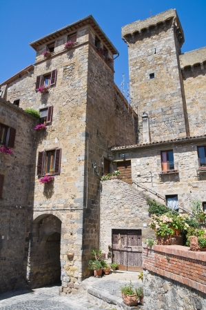 Castle of Bolsena. Lazio. Italy. Stock Photo - 15079880