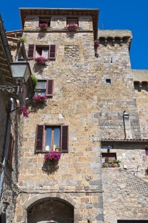 Castle of Bolsena. Lazio. Italy. Stock Photo - 15084493