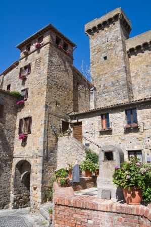 Castle of Bolsena. Lazio. Italy. Stock Photo - 15079885