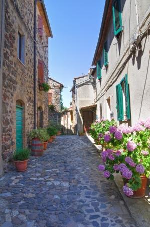 urbanistic: Alleyway  Torre Alfina  Lazio  Italy