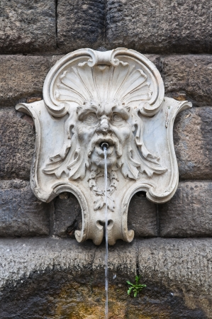 etrurian: Town Hall Building. Nepi. Lazio. Italy. Stock Photo