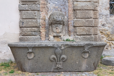 lazio: Farnese Palace  Caprarola  Lazio  Italy
