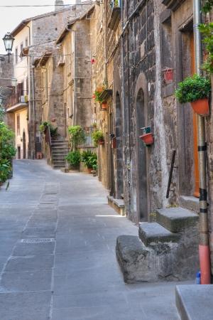 vitorchiano: Alleyway. Vitorchiano. Lazio. Italy.