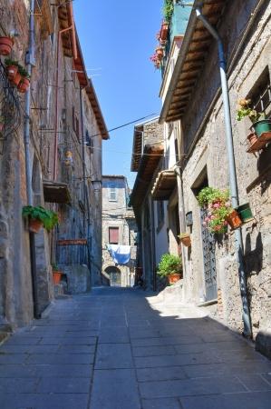 Alleyway. Bagnaia. Lazio. Italy. Stock Photo - 15332396