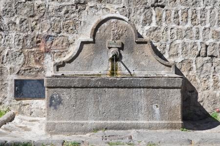 lazio: Historical fountain. Viterbo. Lazio. Italy.