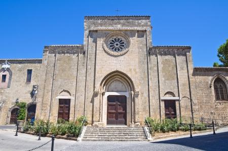 tuscia: Church of St  Francesco  Tarquinia  Lazio  Italy