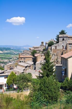 Panoramic view of Orvieto. Umbria. Italy.  photo