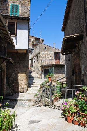 lazio: Alleyway. Capranica. Lazio. Italy.  Stock Photo