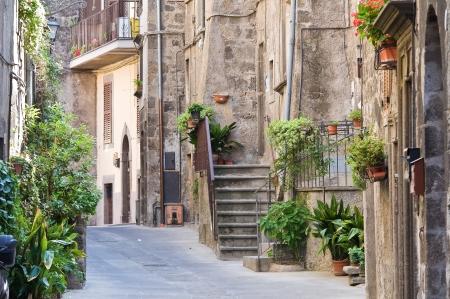 Alleyway. Vitorchiano. Lazio. Italy. Stock Photo - 15992648