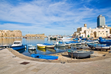 Panoramic view of Gallipoli  Puglia  Italy  photo