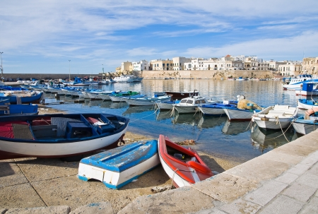 Panoramic view of Gallipoli. Puglia. Italy. Stock Photo - 16585436