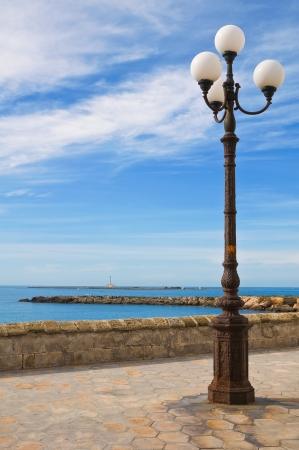 Panoramic view of Gallipoli. Puglia. Italy. Stock Photo - 16590532