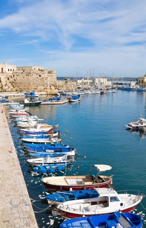 Panoramic view of Gallipoli Puglia, Italy. Stock Photo - 16590661