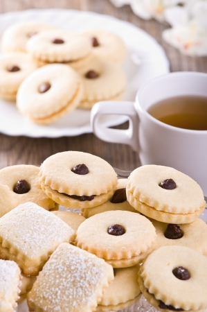 Chocolate biscuits.  Stock Photo - 16685387