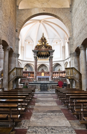 Cathedral of St. Giovenale. Narni. Umbria. Italy.  Stock Photo - 16817940