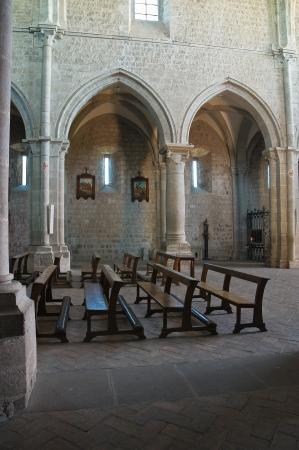 nave: Abbey of San Martino al Cimino  Lazio  Italy
