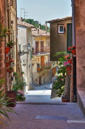 Alleyway  Soriano nel Cimino  Lazio  Italy  Stock Photo - 16938533
