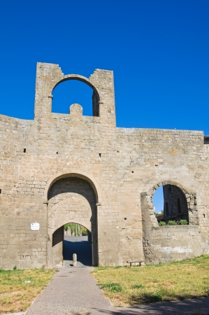 Porta di Valle  Viterbo  Lazio  Italy  Stock Photo - 17042934