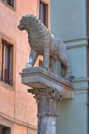 Town hall building  Viterbo  Lazio  Italy Stock Photo - 17340455