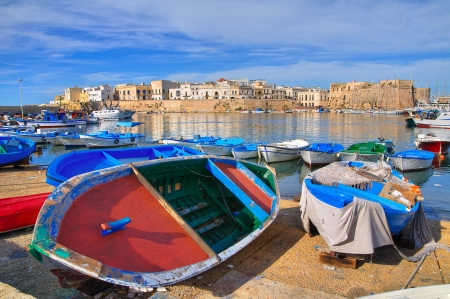 Panoramic view of Gallipoli  Puglia  Italy
