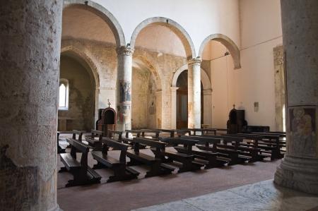 francesco: Church of St  Francesco  Narni  Umbria  Italy