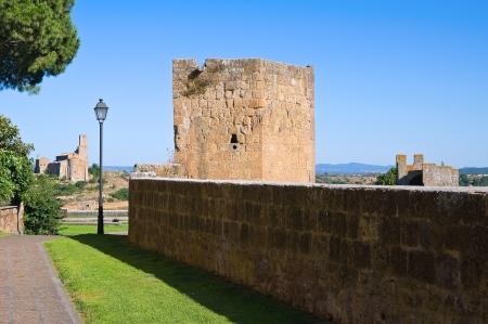 tuscania: Fortified walls  Tuscania  Lazio  Italy