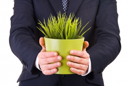 Businessman holding potted plant   photo