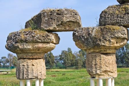 archaeological: Archaeological Park. Metaponto. Basilicata. Italy.  Editorial