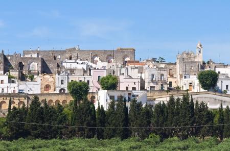 Panoramic view of Specchia  Puglia  Italy  photo