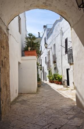 Arco Fanelli. Mottola. Puglia. Italy. photo