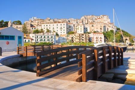 rodi: Panoramic view of Rodi Garganico. Puglia. Italy.