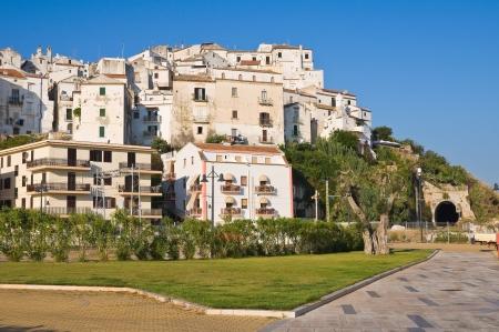 Panoramic view of Rodi Garganico. Puglia. Italy. Stock Photo - 22020148