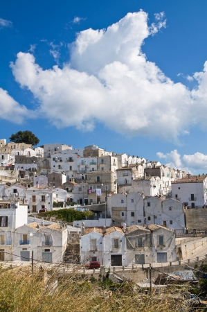 Panoramic view of Monte SantAngelo  Puglia  Italy  Stock Photo - 22096867