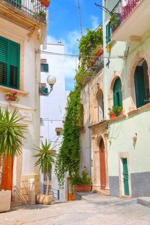 Alleyway. Rodi Garganico. Puglia. Italy.  Stock Photo - 22354617