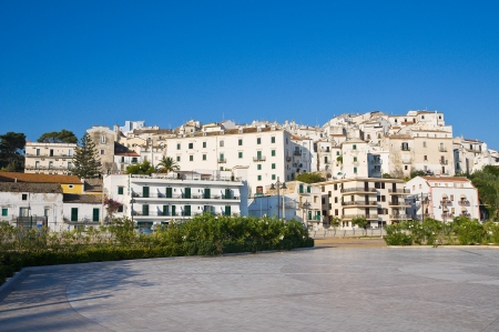 Panoramic view of Rodi Garganico  Puglia  Italy   photo