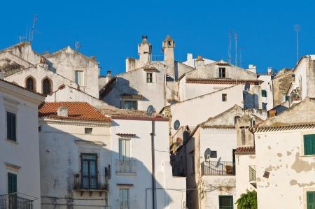 rodi: Panoramic view of Rodi Garganico  Puglia  Italy