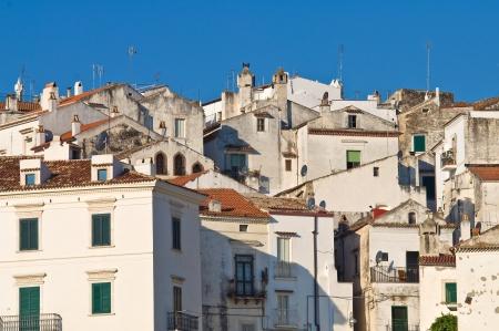 rodi garganico: Panoramic view of Rodi Garganico  Puglia  Italy