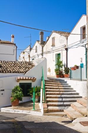 Alleyway. Pisticci. Basilicata. Italy. Stock Photo - 24562645