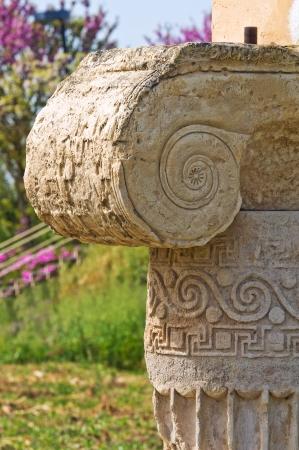 archaeological: Archaeological Park. Metaponto. Basilicata. Italy.